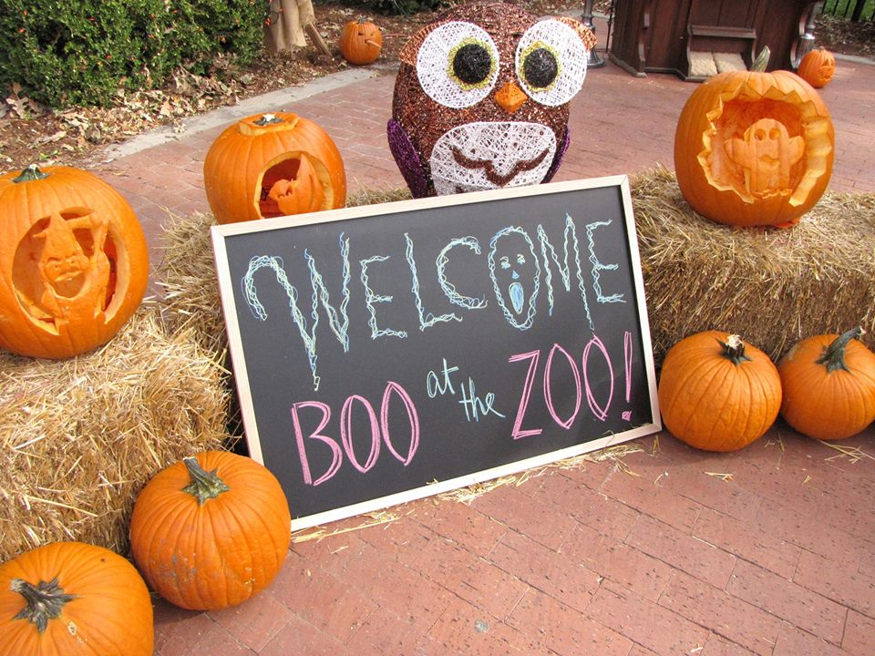 Boo! at the Zoo @ Lee Richardson Zoo